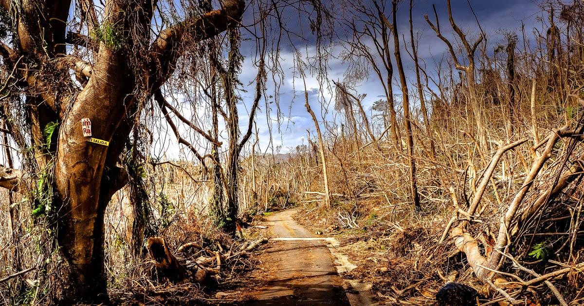 hurricane maria images preston ehrler